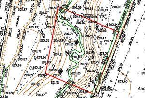 Топосъемка земельного участка, выполнена для ландшафтного дизайна. Московская область,  Истринский муниципальный район.