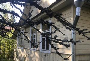 Оформление жилого дома в СНТ. г. Сергиев Посад
